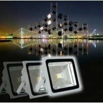 1pc Waterproof LED Flood Light 10w 20w 30w 50w Warm/Cool White RGB Remote Control Outdoor Lighting Led Floodlight AC85-265V