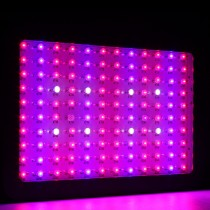 2pcs Led Grow Light for Aquarium Plants 600W Led Full Spectrum Led Plants Lamp for Indoor Growing Plants Grow Box Bloom