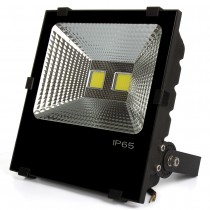 1pcs 100W Led Flood Light AC85-265V Led Outdoor Light Floodlights Lamp Warm/Cold White Led Reflector Lamp