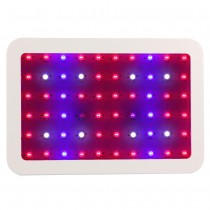 1pcs 600W Double Chips LED Grow Light Full Spectrum Plant Growth 410-730nm For Indoor Plants and Flower Phrase Very High Yield