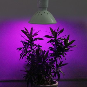 10pcs New Hydroponics Lighting 20W E27 166Red/34Blue Led Grow Light for Plants Flowering Led Lighting Aquarium Lamps