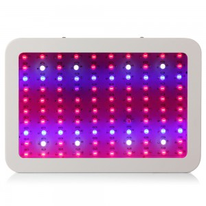 1pcs Full Spectrum LED Grow Light 1000W Double Chip LED Grow Plant Light for Greenhouse Grow Box Tent Plants Flower High Quality